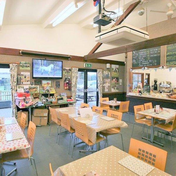 Camargue Cafe indoor view